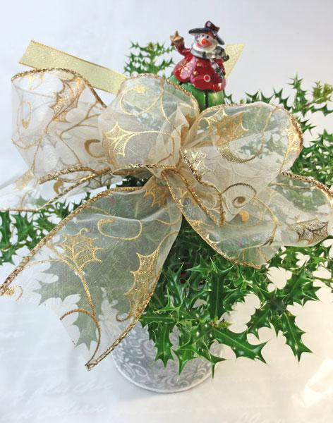 姫ヒイラギの鉢植えギフト