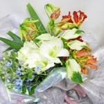 アマリリスとカラーを使った花束