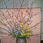 吉野桜とオウバイ