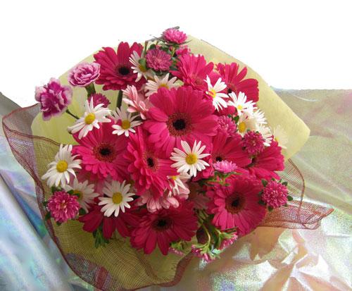 ガーベラとアスターの花束