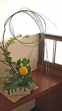 枝垂れ柳とピンポンマムのアレンジ