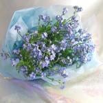 ワスレナグサの花束