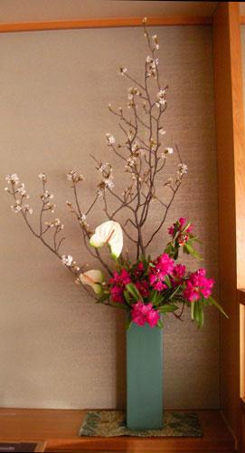 石楠花と桜