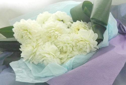 ダリアとハランの花束