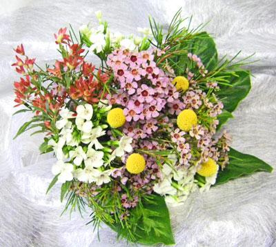ワックスフラワーとフロックスの花束