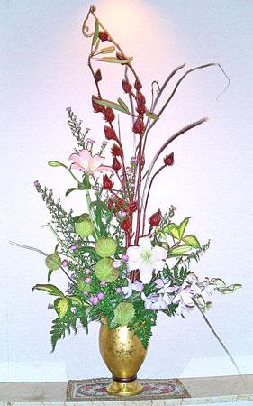 紅葵とフウセントウワタ