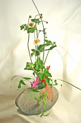 秋明菊とトウガラシ