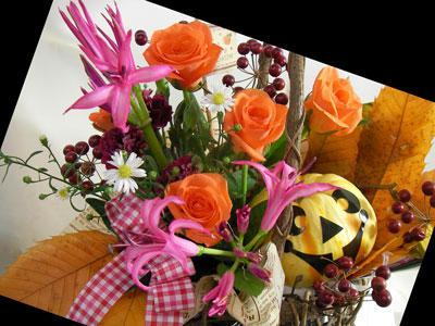 おもちゃかぼちゃとネリネのアレンジ