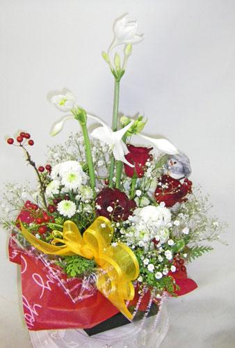 ユーチャリスとバラのアレンジメント
