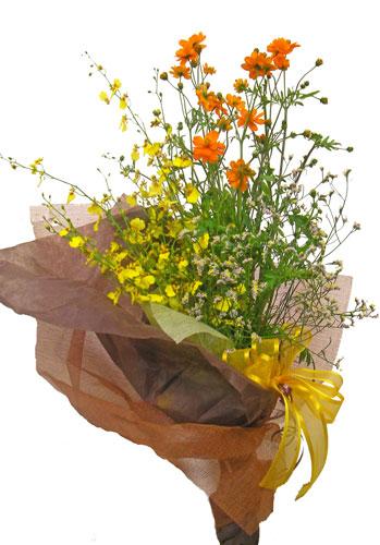 キバナコスモスとオンシジウムの花束