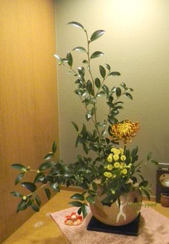 茶と菊のアレンジ