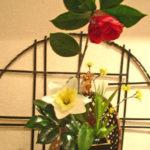 ラッパ水仙と椿