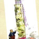 銀銭花(ギンセンカ)のハーバリウム)